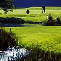 Rathsallagh Golf Club, Co Wicklow by The Irish Image Collection