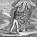 Rattlesnake by Granger