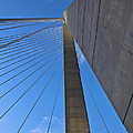 Ravenel Overhead Day - Vertical by Donni Mac
