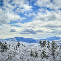 Raven's View In Winter by Joye Ardyn Durham
