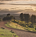 Rays Of Sunlight Over Clent Countryside by Verity E. Milligan