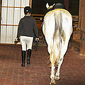 Ready For The Dressage Lesson by Roena King