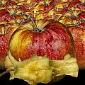 Red Apples And Core by Randall Nyhof