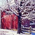 Red Barn In The Winter Connecticut Usa by Sabine Jacobs