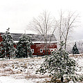 Michigan Red Barn Winter Scene Snow Landscape by Kathy Fornal