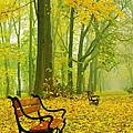 Red Benches In The Park by Jaroslaw Grudzinski