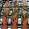 Red Brick Building by Sarah Loft