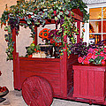 Red Cart Of Flowers by Terry Wallace