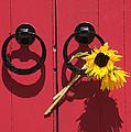 Red Door Sunflowers by Garry Gay