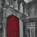 Red Door by Susan Candelario