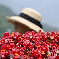 Red Flowers And Straw Hat by Mats Silvan