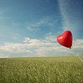 Red Heart Balloon, Blue Sky And Fields by Image by Debbie Margetts - Ancora Imparo
