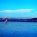Red Lighthouse In Cayuga Lake New York by Paul Ge