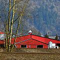 Red Matsqui Barn by Randy Harris