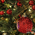 Red On A Green Christmas Tree by Eddie McGee
