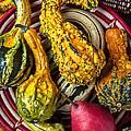 Red Pear And Gourds by Garry Gay