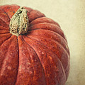 Red Pumpkin by Angela Doelling AD DESIGN Photo and PhotoArt