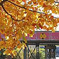 Red Railroad Trestle by Lizi Beard-Ward