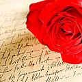 Red Rose Over A Hand Written Letter by U Schade