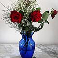 Red Roses by Vilas Malankar