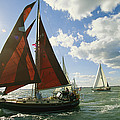Red-sailed Sailboat And Others by Skip Brown