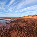 Red Sands Low Tide by Aisha Karen Khan