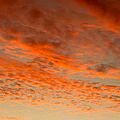 Red Sky by Les Palenik