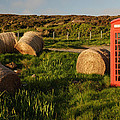 Red Telephone Booth by Chlaus Loetscher