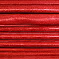 Red Velvet by Kantilal Patel