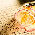 Red Yellow Rose Over A Hand Written Letter by U Schade