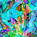 Reef Life by Francesa Miller