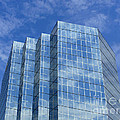Reflected Sky by Methune Hively