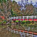 Reflecting Bridge by Michael Frank Jr