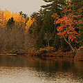 Reflecting On Autumn by Susan Capuano