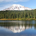 Reflection Lake - Mt. Rainier by Michael Merry