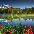 Reflection Lakes by William Freebillyphotography