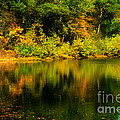 Reflection Of Autumn Colors by Peggy Franz