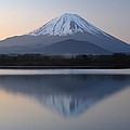 Reflection Of Symmetry by Jonathan Zhang