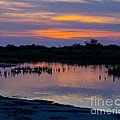 Reflection Of The Sunset by Stephen Whalen