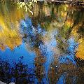 Reflection Perfection by Teri Schuster