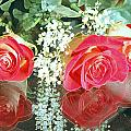 Reflection Red Roses by Maria isabel Villamonte
