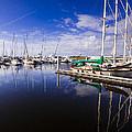 Reflections Brunswick Marina by Michael Ray