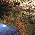 Reflections by Dottie Gillespie