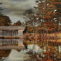 Reflections Of Autumn by Robin-Lee Vieira