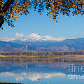 Reflections Of Longs Peak  by James BO  Insogna
