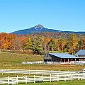 Remick Farm Autumn by Larry Landolfi
