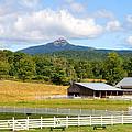 Remick Farm Summer by Larry Landolfi