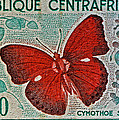 Republique Centrafricaine Butterfly Stamp by Bill Owen