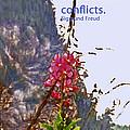 Restful Flowers by Ian  MacDonald