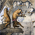 Reynard The Fox, 1846 by Granger